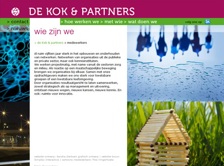 Website De Kok en Partners - Arnhem